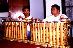 Gamelan Anak Swarasanti | Instruments - Styles